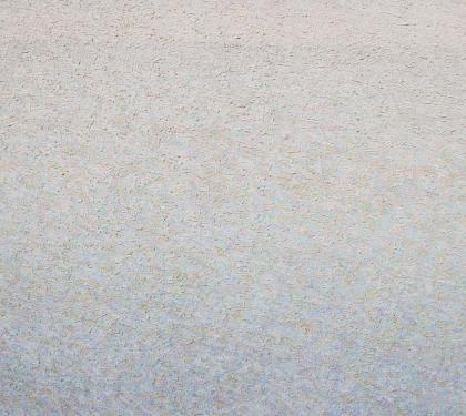 """White on White"" by Leonard Nelson"